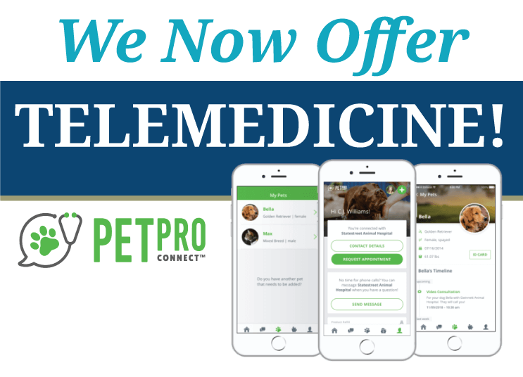 We Now Offer Telemedicine!