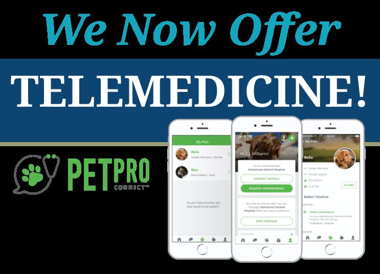 We Now Offer Telemedicine!